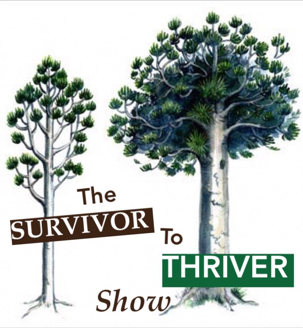 The Survivor to Thriver Show - show cover