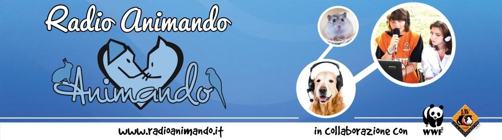 Radio Animando... - show cover