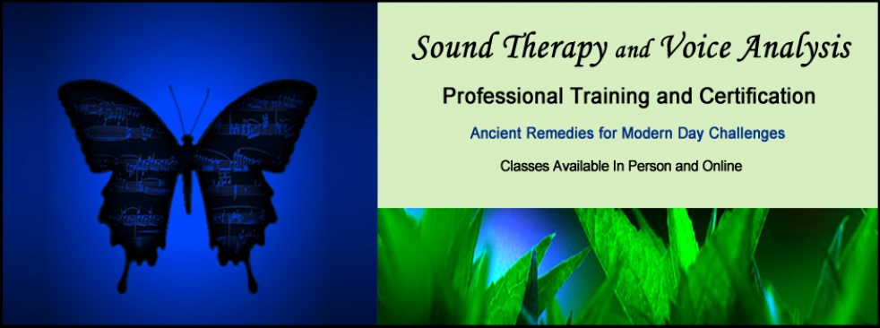 Sound Therapy with Robin Duncan - show cover