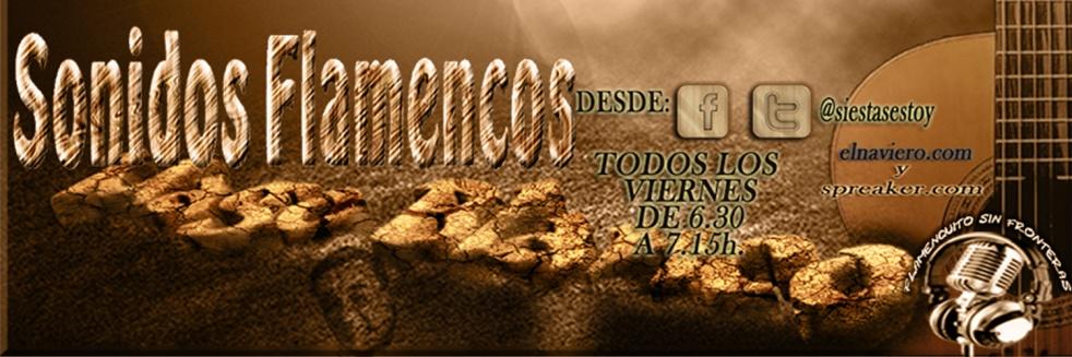 Mago Blanco, Flamenquito sin Fronteras - show cover