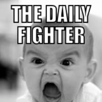 The Daily Fighter