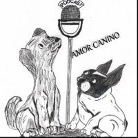#45 Hacemos Amor Canino en Interpodcast 2016 (Por Guiller y yo / Amor Canino)