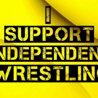 Independent wrestling on the rise (RING OF HONOR IMPACT AND MORE TALK)
