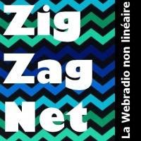Ziz Zag Net
