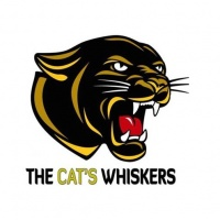 The Cat's Whiskers Podcast - Just The Two Of Us