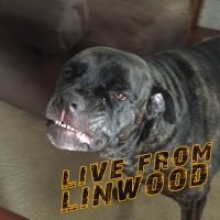 07.31.2017 - Live from Linwood - U-Rock Today