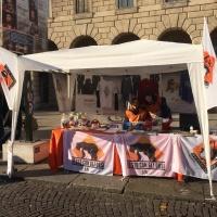 #19 Botti Capodanno e Pellicce - BRA' VR