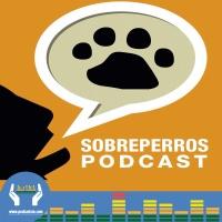 123 - Perros guía en Mexico
