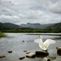 Running in the Lake District