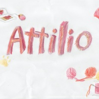 Lo show di Attilio Nardelli