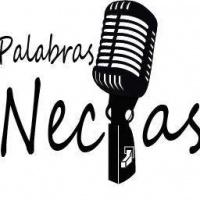 027 - PALABRAS NECIAS