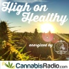 Balancing Your Body By Supporting a Healthy Endocannabinoid ...