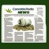 New Mexico, Nebraska, and Nevada press forward on marijuana