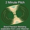 2 Minute Pitch - Loren Weisman Explaining Brand Precision Marketing.