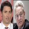 Canadian Politics with a twist