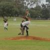 Ladywhips Baseball