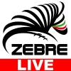 Zebre - Newport Gwent Dragons