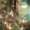 Fairys In The Mist (Blog)