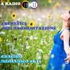 ESOMEDITAZIONE, METAFONIA, nel piu' esclusivo salotto del WEB , IL CERCHIO MEDIANICO 11.11...con Barbara Amadori e Vittorio Paola da Palermo