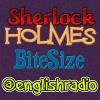 Sherlock Holmes BiteSize