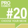 PC 020: Choose Your Perfect Niche