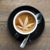The Coffee and Chronic Hour