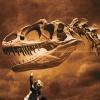 "198 ""We Believe In Dinosaurs"" & Social Impact Bonds"