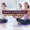 AWAKE Experience