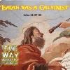 """John 12:37-43 """"Isaiah was a Calvinist"""""""