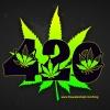 EL 420  Ghostbusters y algo para ese Tic Nervioso