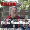 Chris Sutton: Valles Mines Investigation On Filler