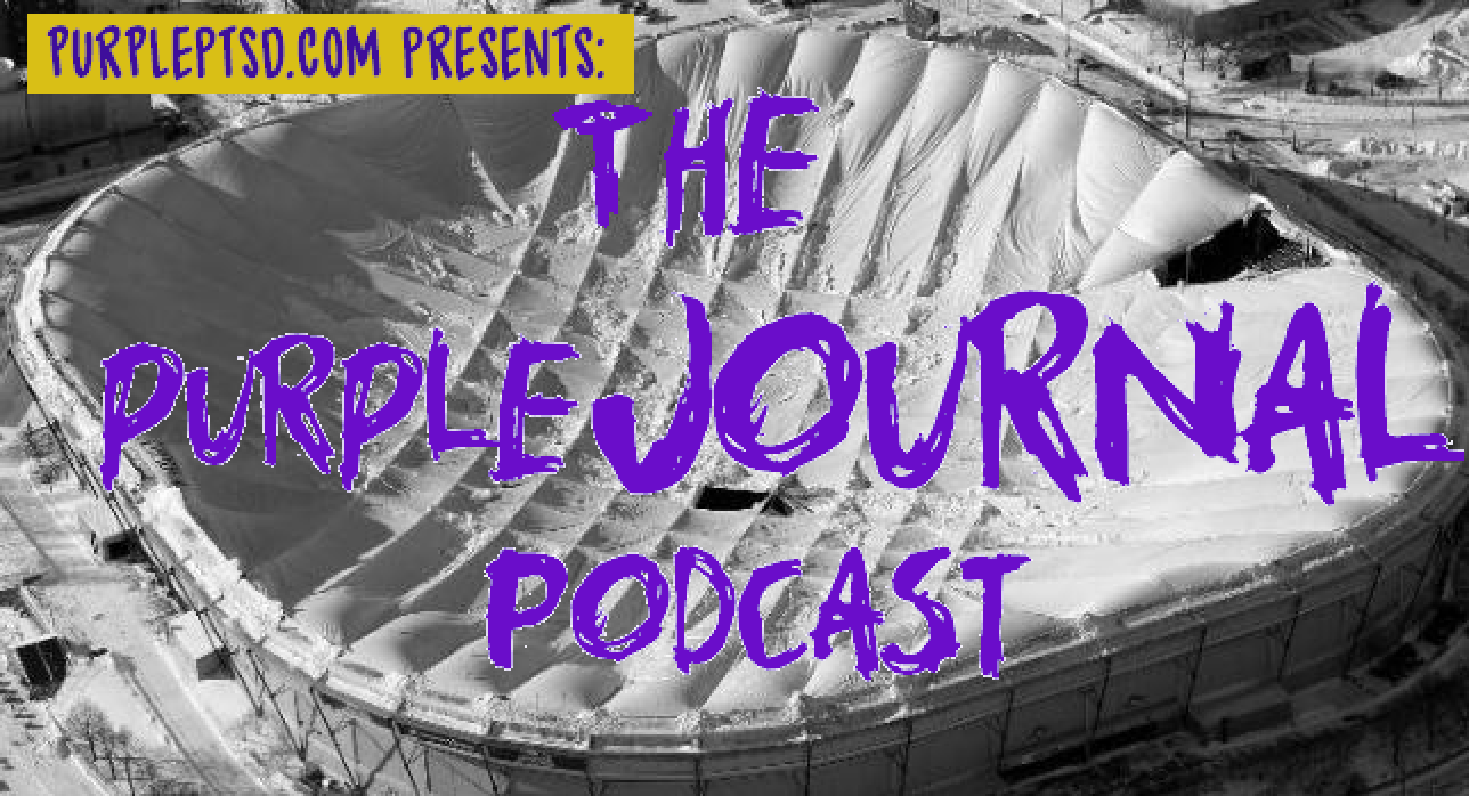 The purpleJOURNAL Podcast