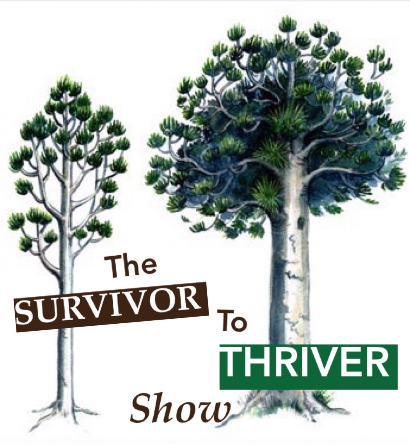 Survivor to Thriver Show: Transform Your Fear Into Freedom with Samia Bano