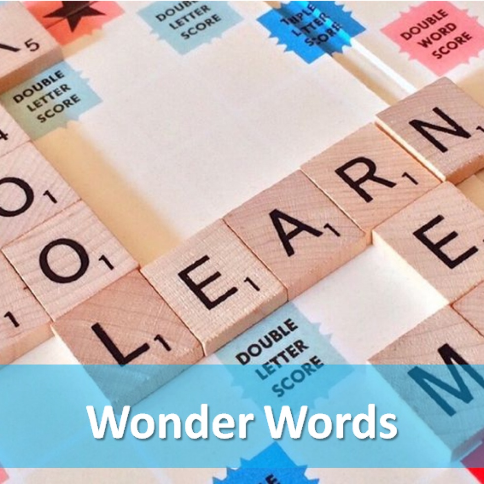Wonder Words - show cover