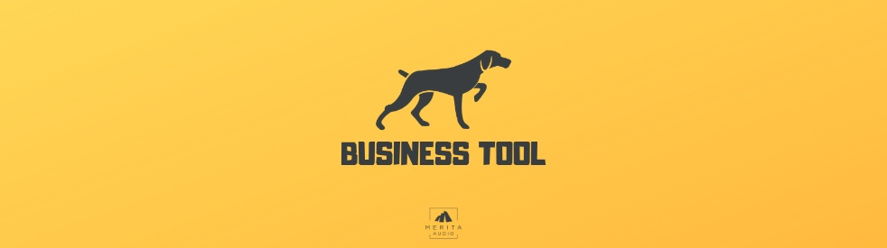 Business Tool - show cover