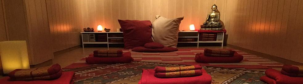 Meditación con Juan Manzanera - imagen de show de portada