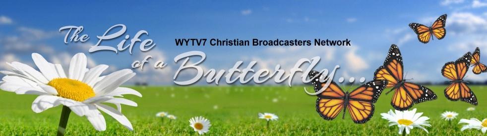 The Life of a Butterfly - immagine di copertina dello show