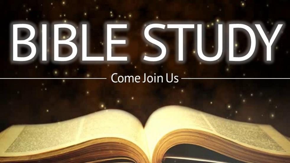 IMMERSION IN THE WORD- BIBLE STUDY - imagen de portada