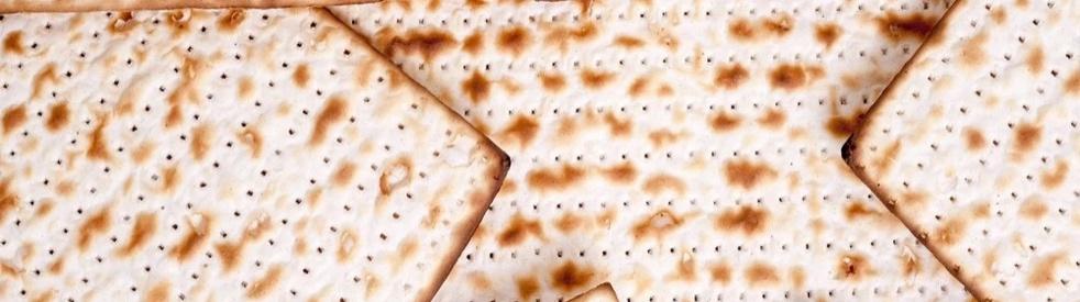 Jewish Holidays Explained! - immagine di copertina dello show