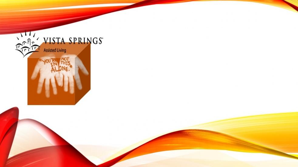 Vista Springs _ Senior Living 2019 - show cover