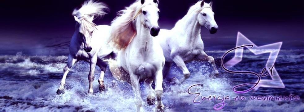 SER: Energía en Movimiento - Cover Image