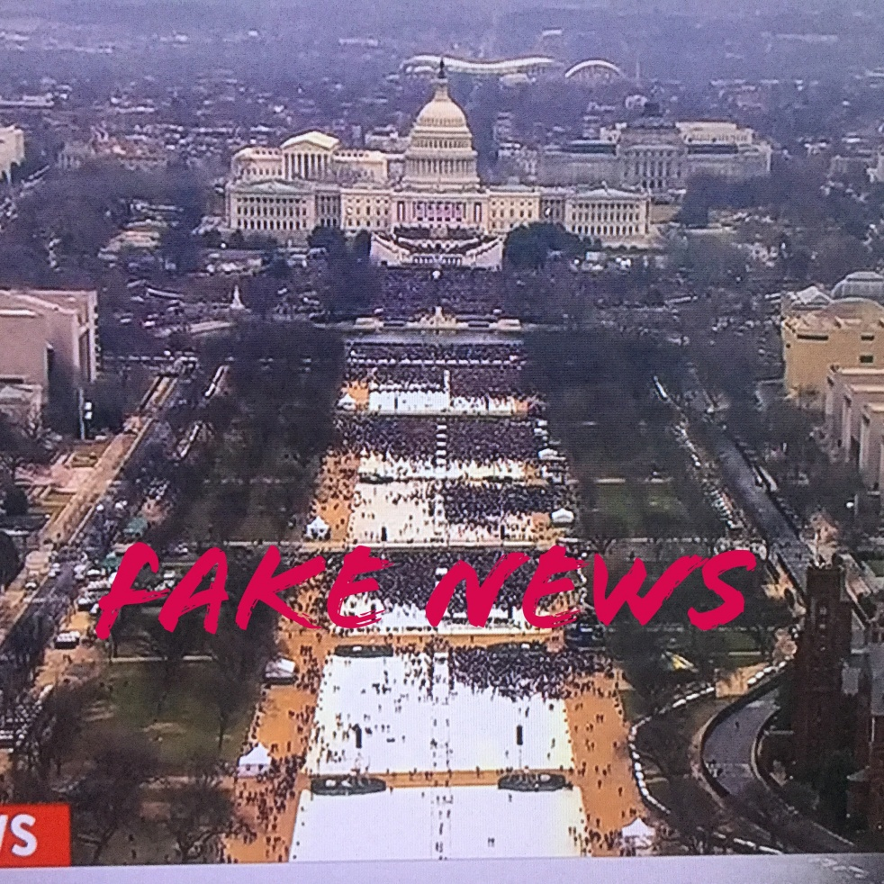 Fake News: Journalism and Deceptions - show cover