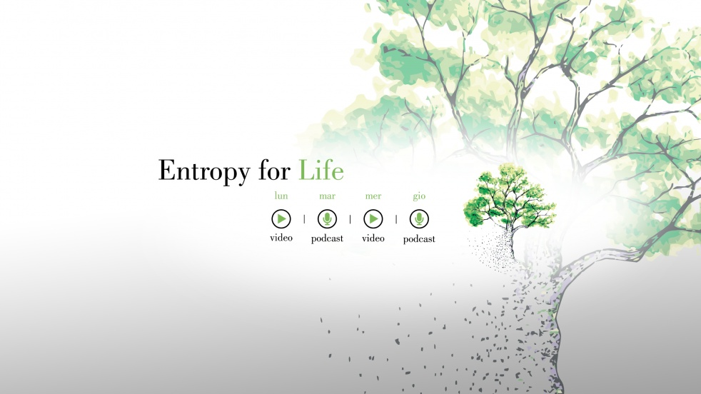 Entropy for Life - show cover