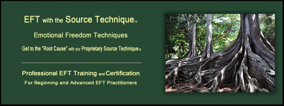 EFT Source Technique with Robin Duncan - show cover