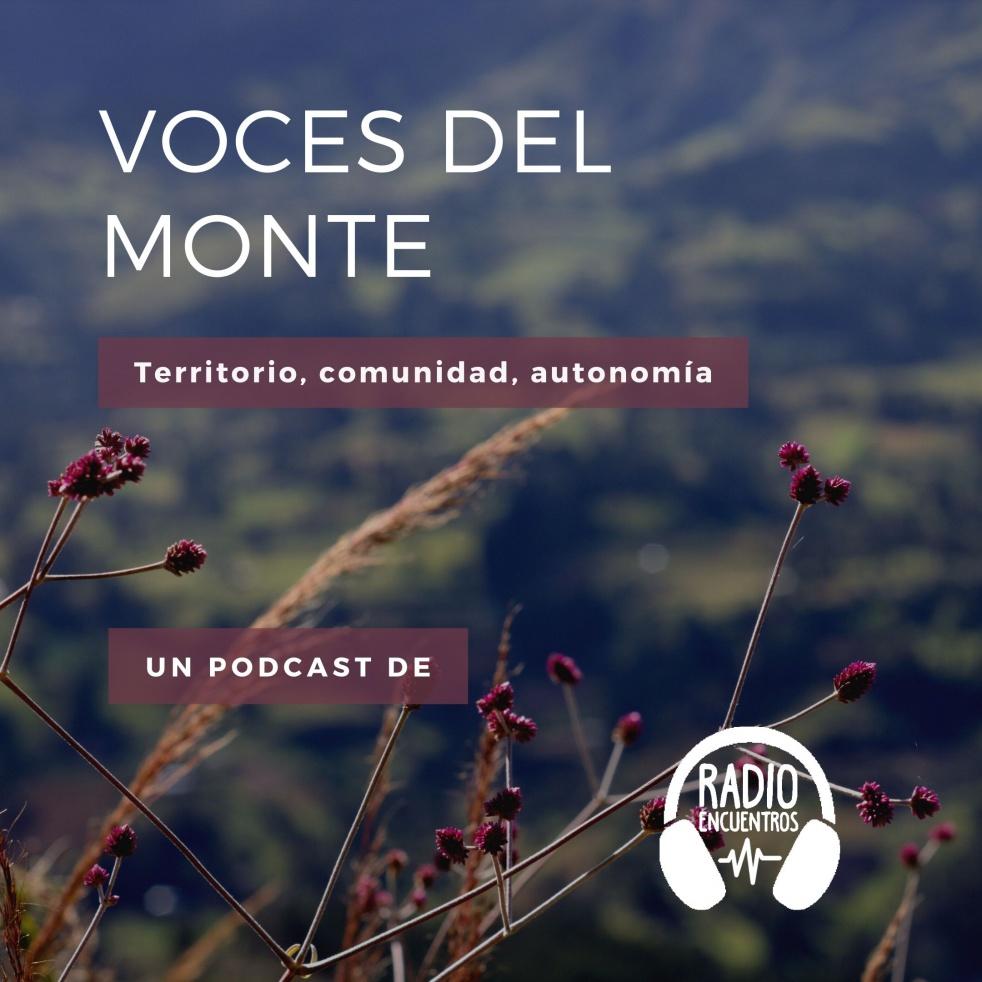 Voces del monte - Cover Image