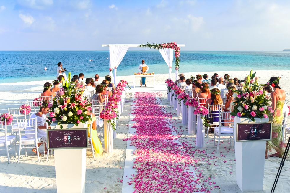 The Wedding Show - immagine di copertina dello show