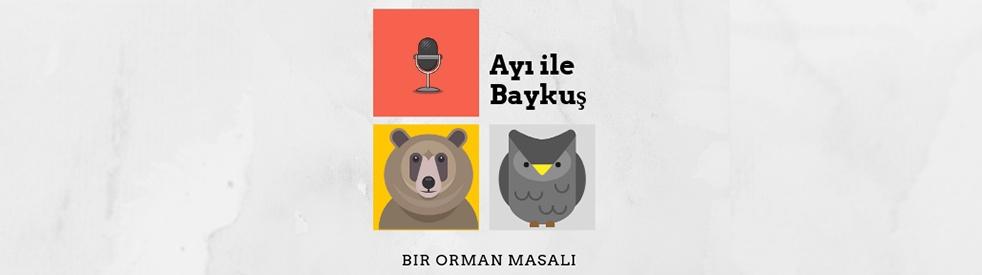 Ayı ile Baykuş - show cover