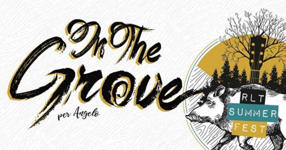 Waiting For In The Grove 2019 - imagen de show de portada