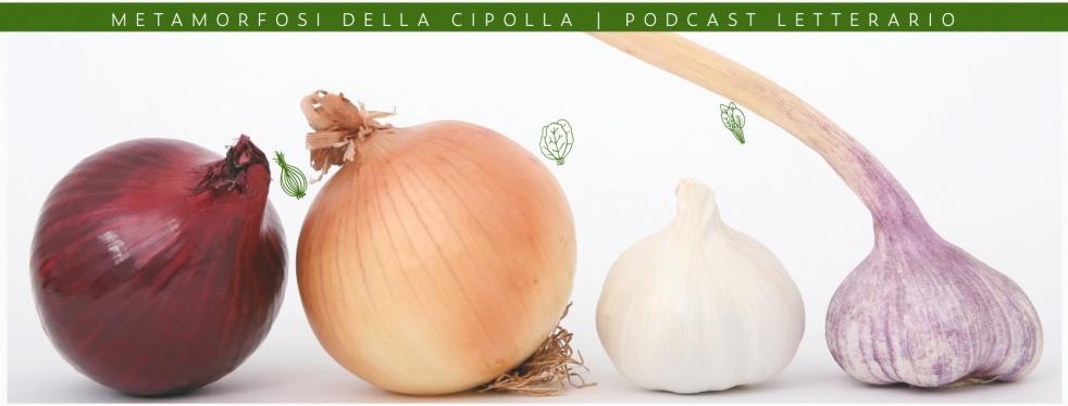 Metamorfosi della Cipolla - imagen de portada