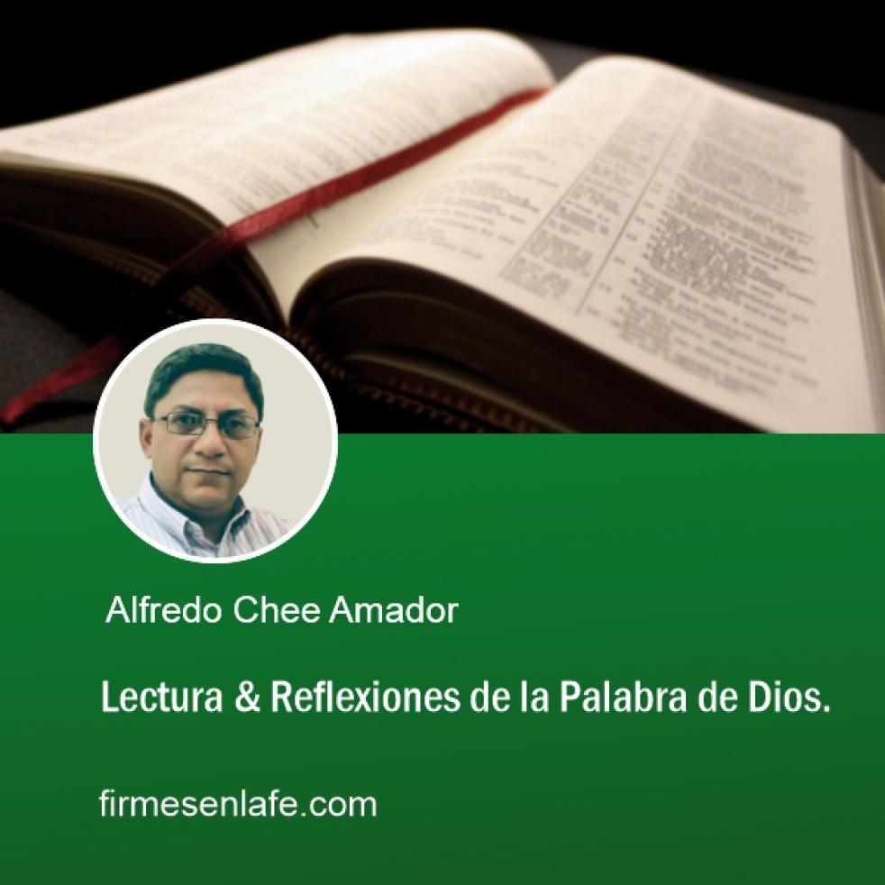 Estudios Sobre El Libro De Marcos - Cover Image